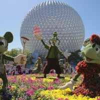 Where the dreams come true - Epcot